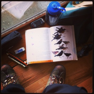 A bird field guide, pencils, binoculars - winter birding materials.