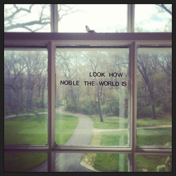 "Lettering stickers on a window spell out the phrase ""look how noble the world is."""